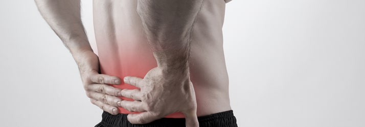 Chiropractic Brookfield WI Back Pain